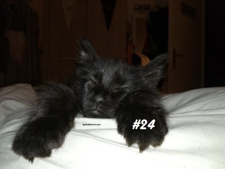 #24 Etes-vous superstitieux?