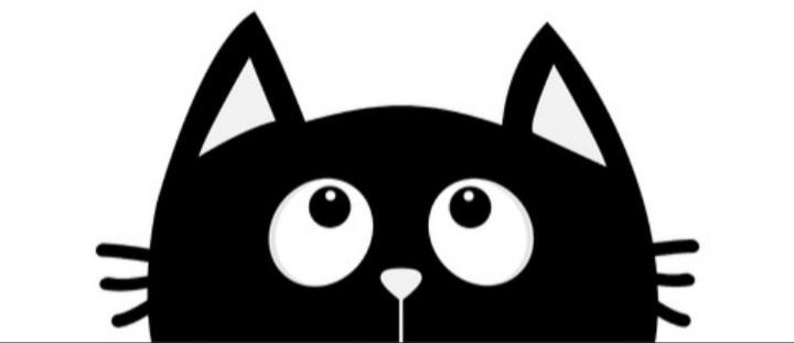 Le Ptit Chat Noir